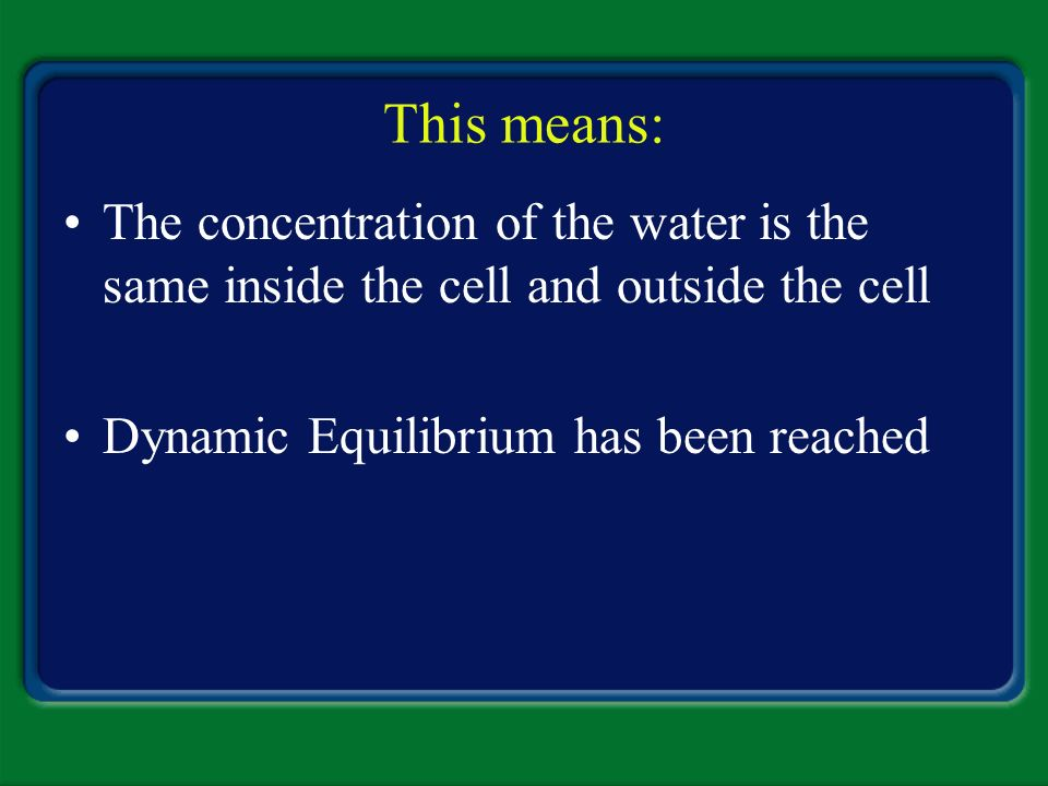 This means: The concentration of the water is the same inside the cell and outside the cell.