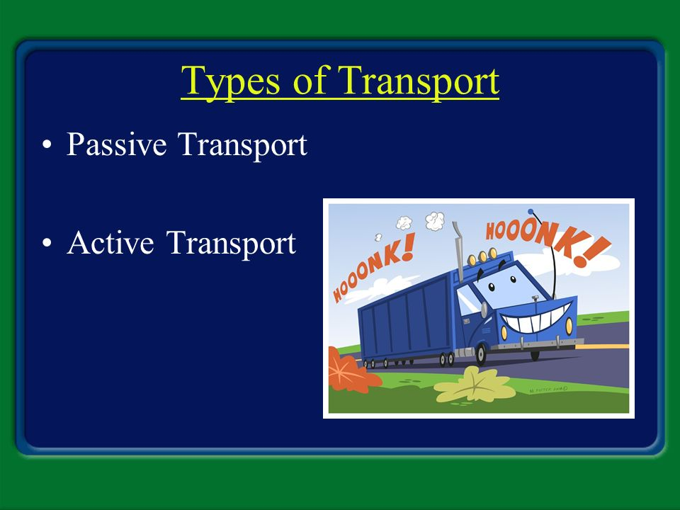 Types of Transport Passive Transport Active Transport
