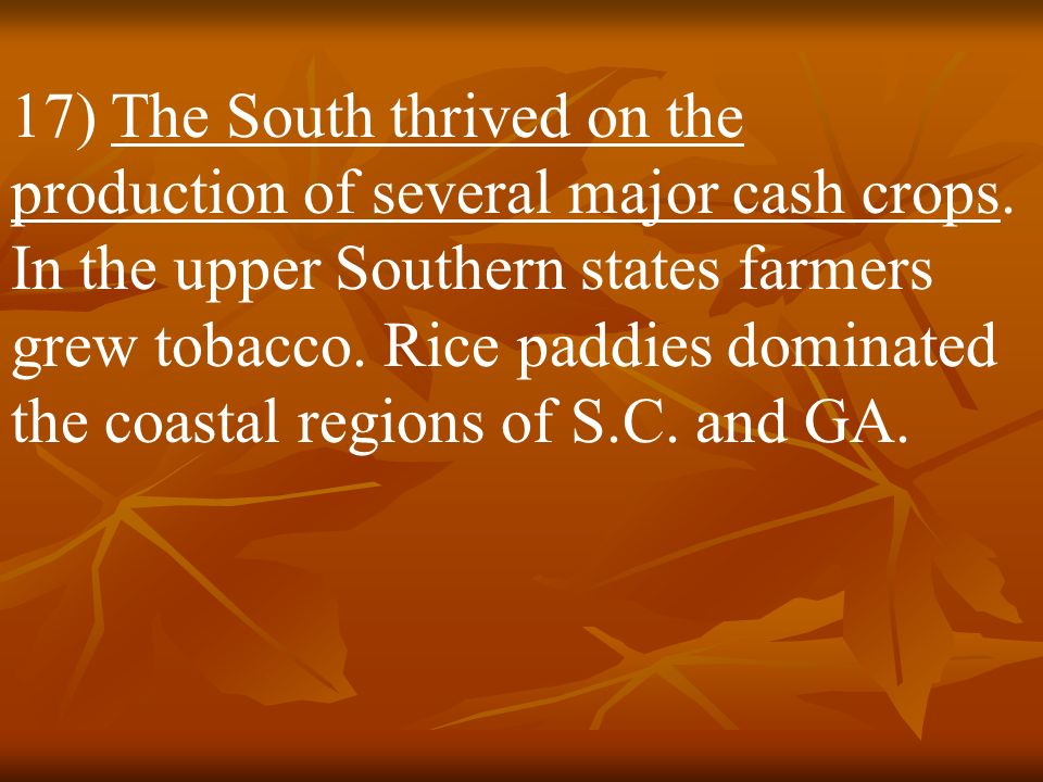 17) The South thrived on the production of several major cash crops