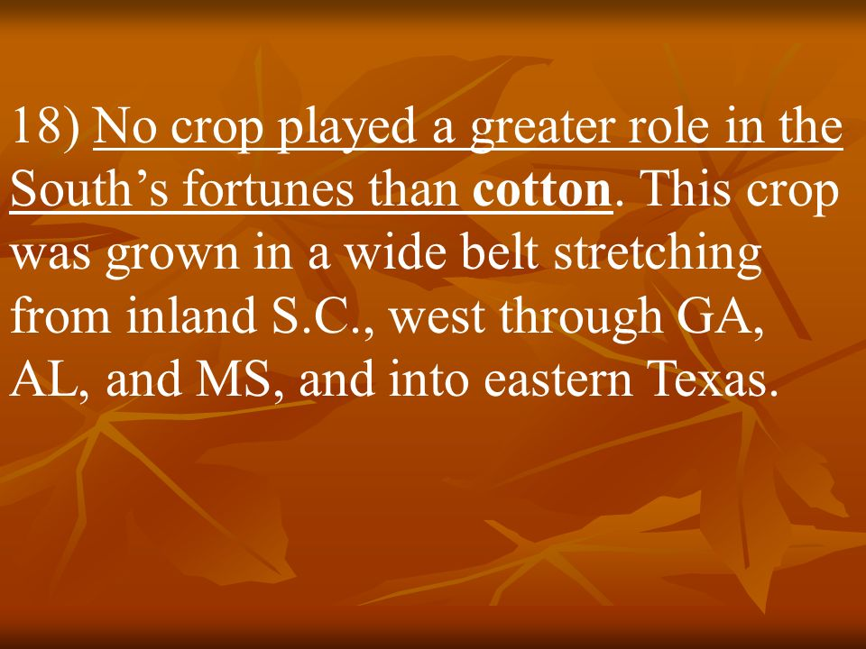 18) No crop played a greater role in the South's fortunes than cotton
