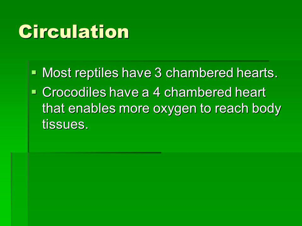 Circulation Most reptiles have 3 chambered hearts.