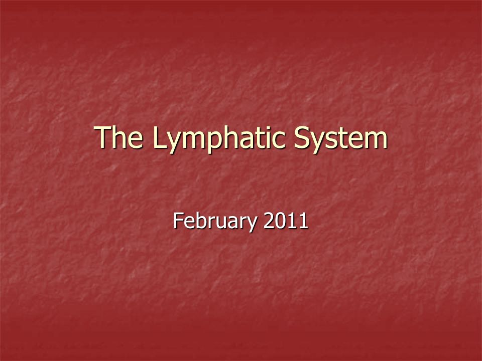 The Lymphatic System February 2011