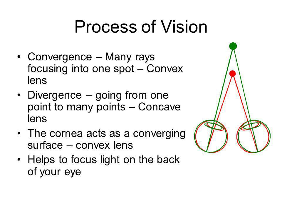 Process of Vision Convergence – Many rays focusing into one spot – Convex lens. Divergence – going from one point to many points – Concave lens.