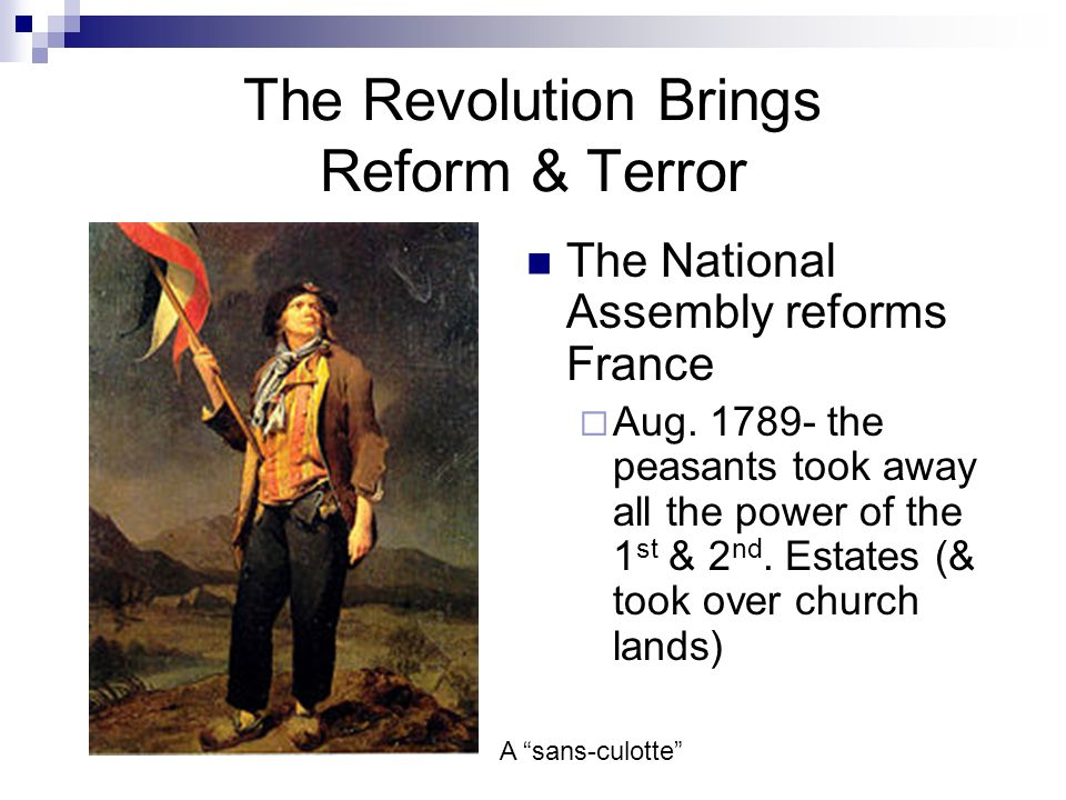 The Revolution Brings Reform & Terror