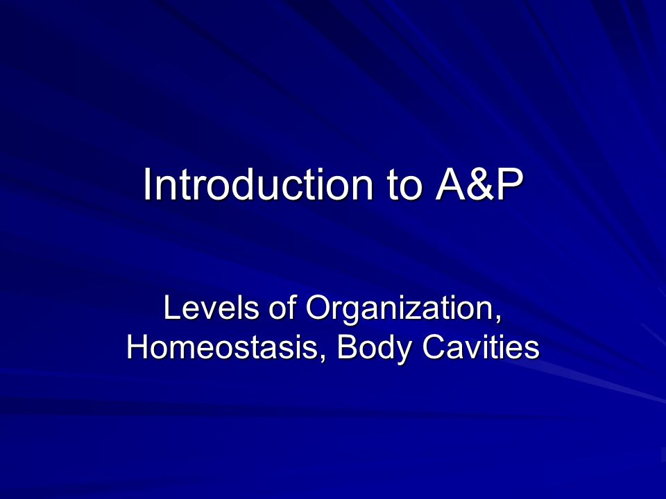 Levels of Organization, Homeostasis, Body Cavities