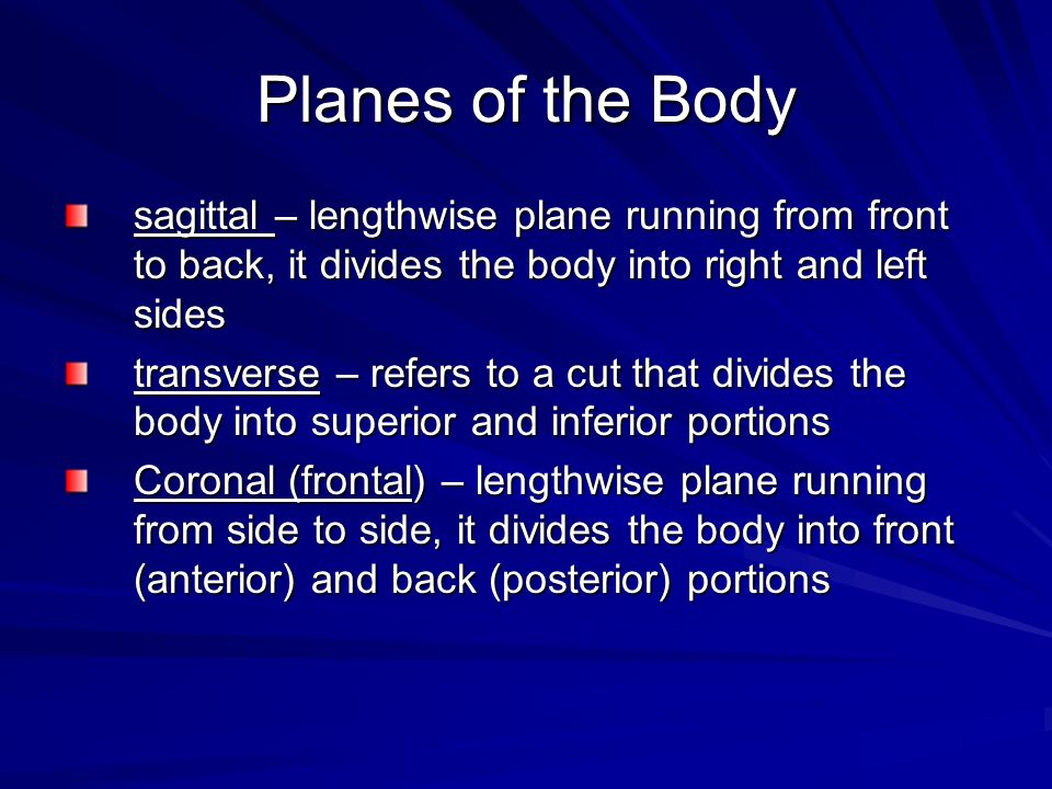 Planes of the Body sagittal – lengthwise plane running from front to back, it divides the body into right and left sides.