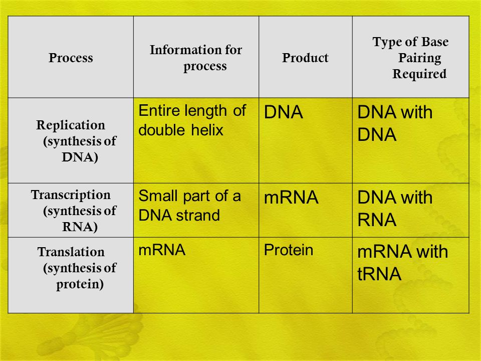 DNA DNA with DNA mRNA DNA with RNA mRNA with tRNA