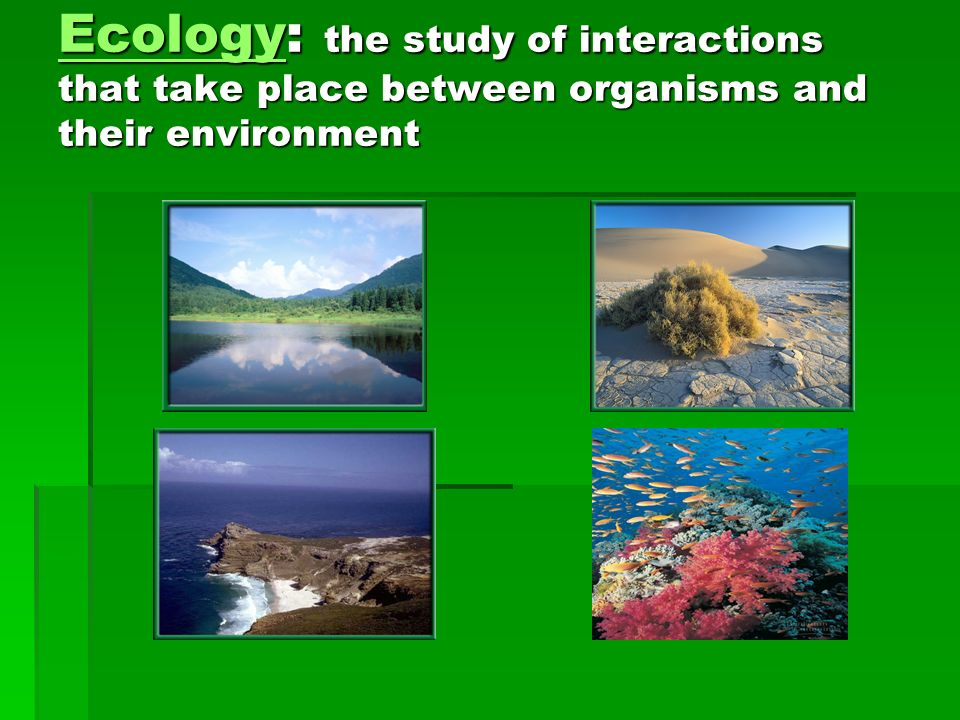 Ecology: the study of interactions that take place between organisms and their environment