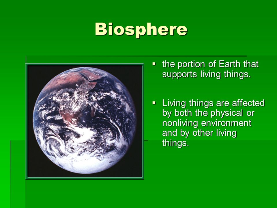 Biosphere the portion of Earth that supports living things.