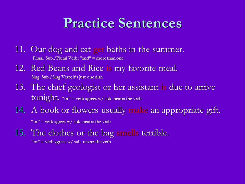 Practice Sentences 11. Our dog and cat get baths in the summer.