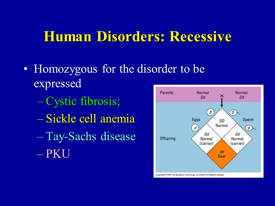 Human Disorders: Recessive