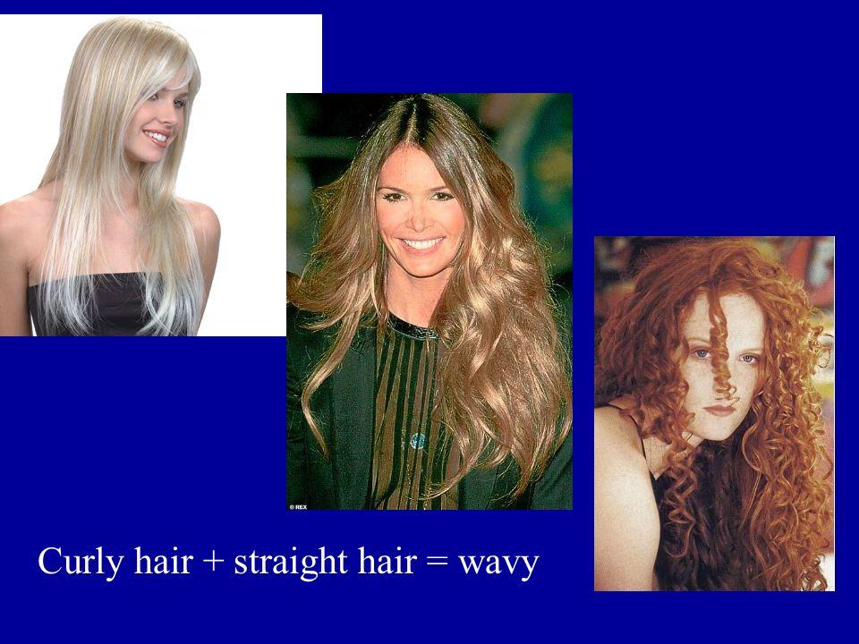 Curly hair + straight hair = wavy