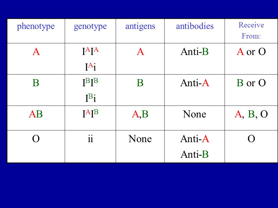 A IAIA IAi Anti-B A or O B IBIB IBi Anti-A B or O AB IAIB A,B None