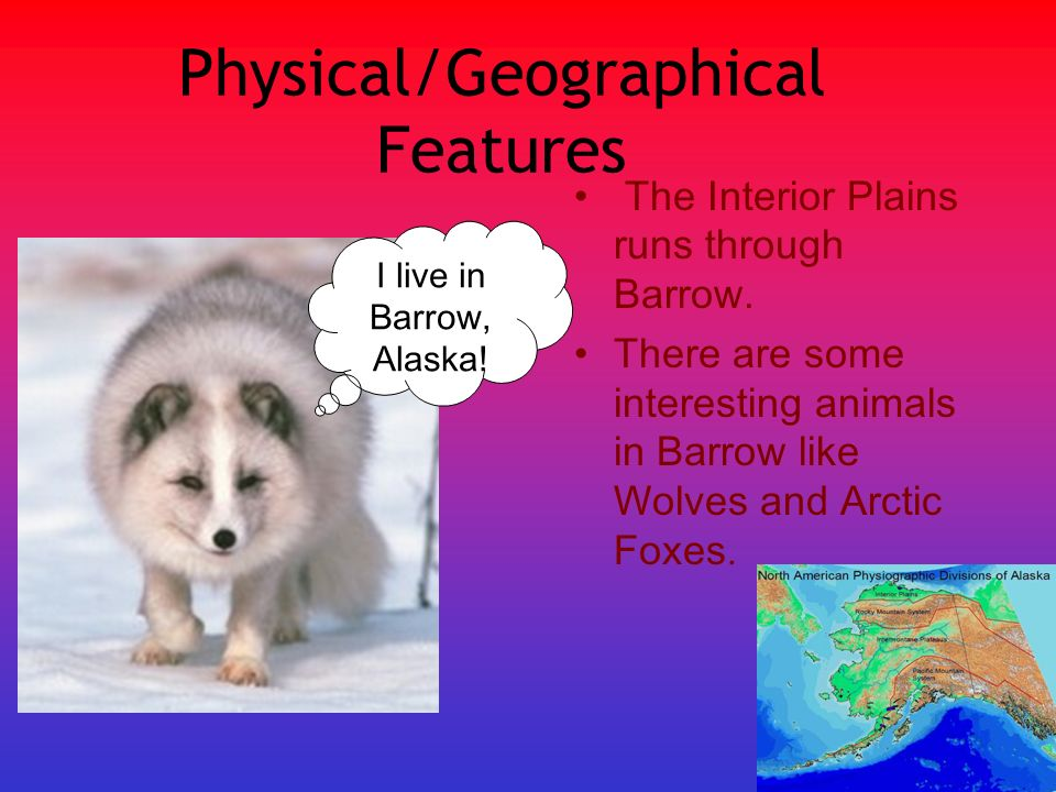 Physical/Geographical Features