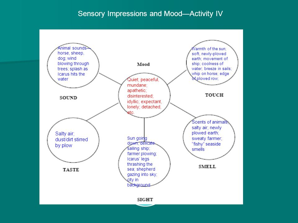 Sensory Impressions and Mood—Activity IV