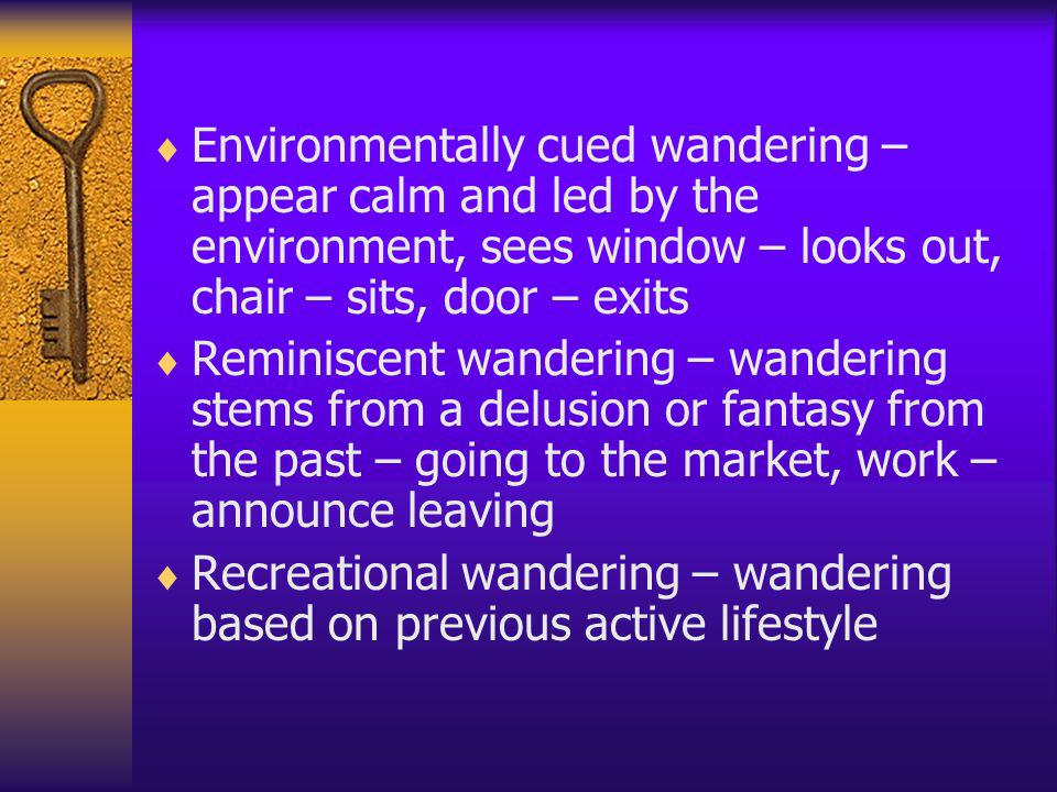 Environmentally cued wandering – appear calm and led by the environment, sees window – looks out, chair – sits, door – exits