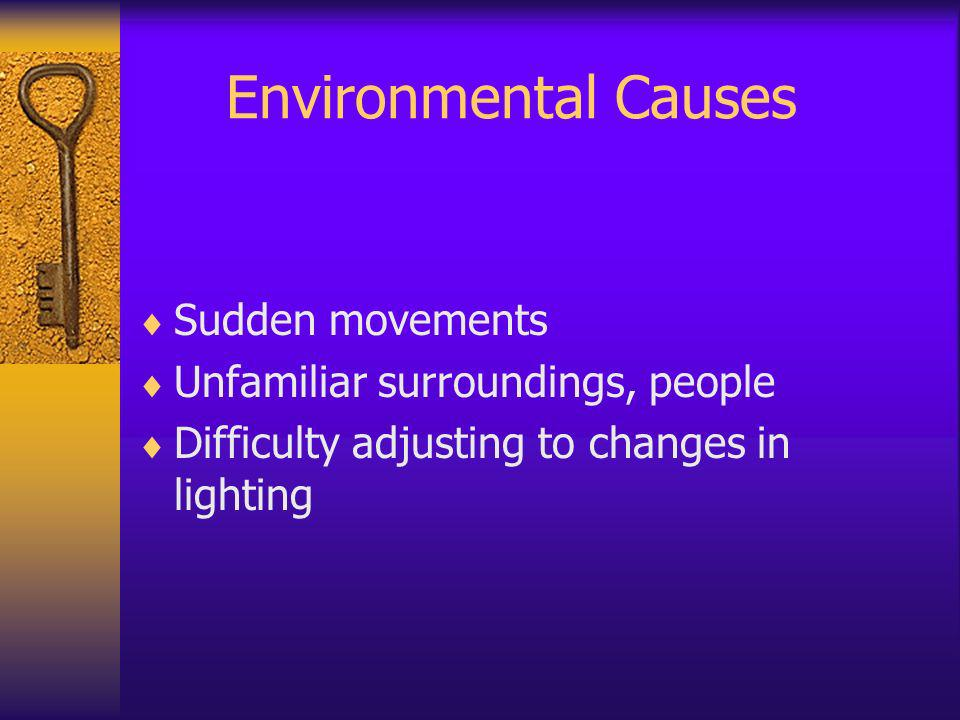 Environmental Causes Sudden movements Unfamiliar surroundings, people