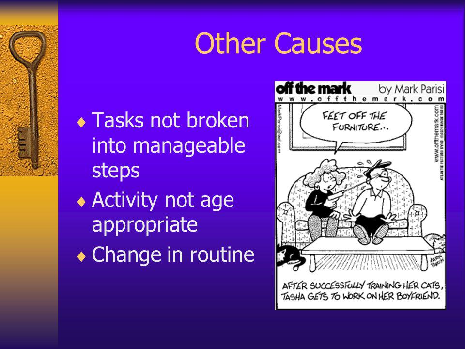 Other Causes Tasks not broken into manageable steps