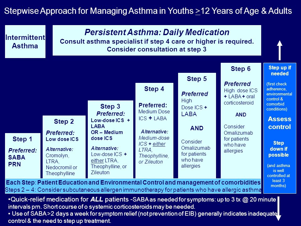 Persistent Asthma: Daily Medication