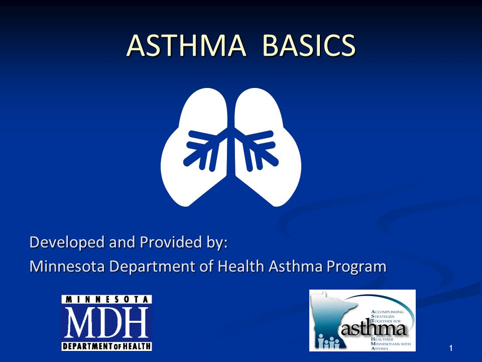 ASTHMA BASICS Developed and Provided by: