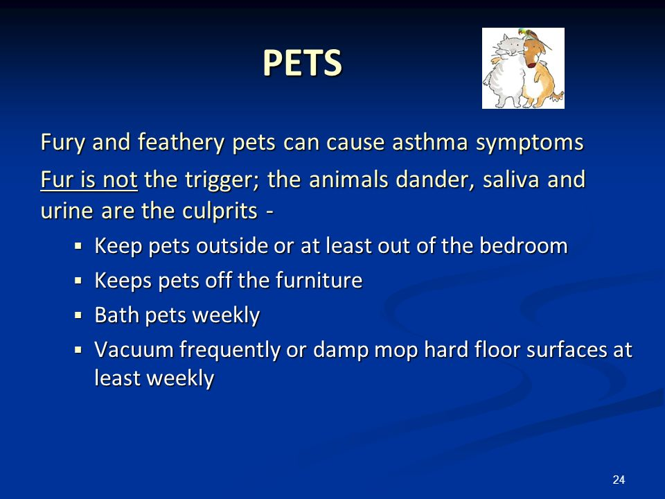 PETS Fury and feathery pets can cause asthma symptoms