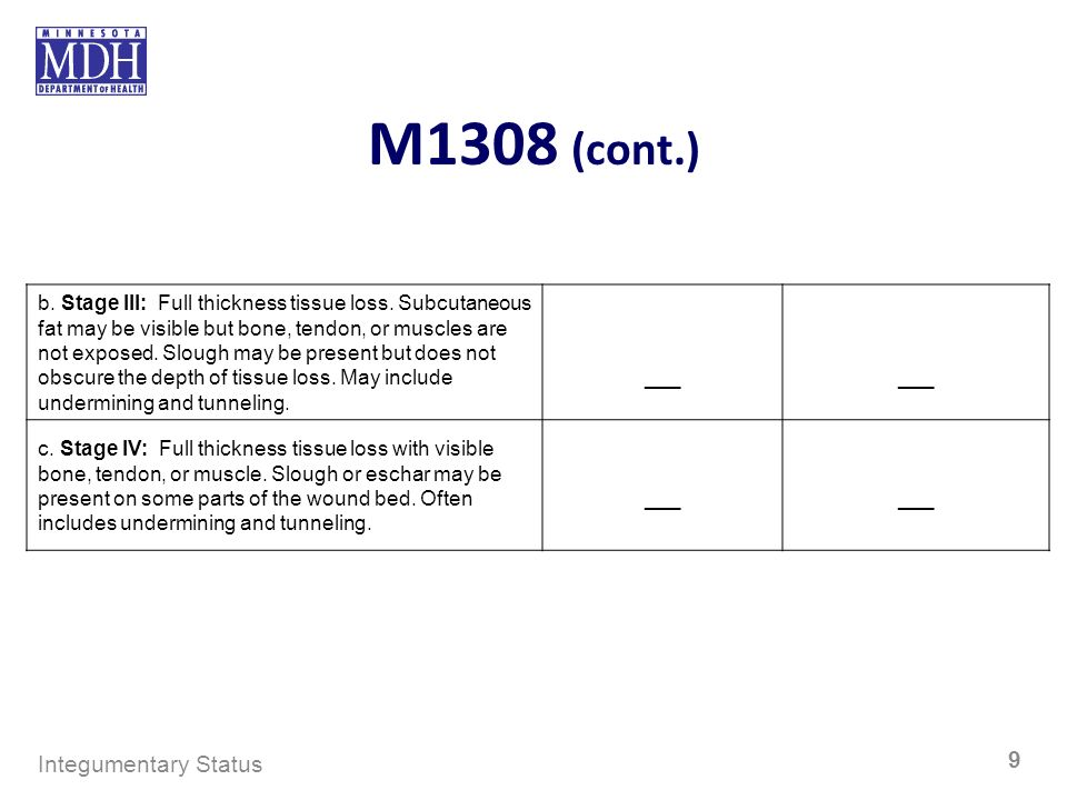 M1308 (cont.) Integumentary Status