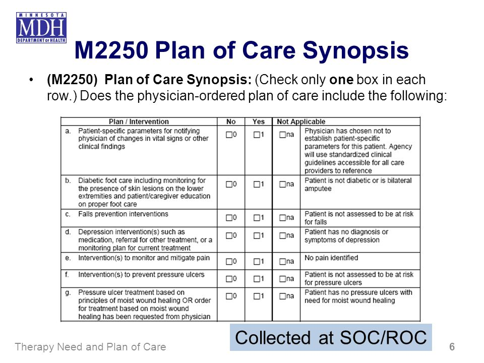 M2250 Plan of Care Synopsis Collected at SOC/ROC