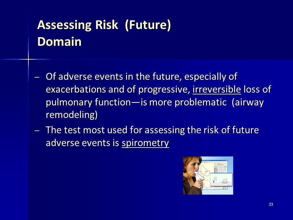Assessing Risk (Future) Domain