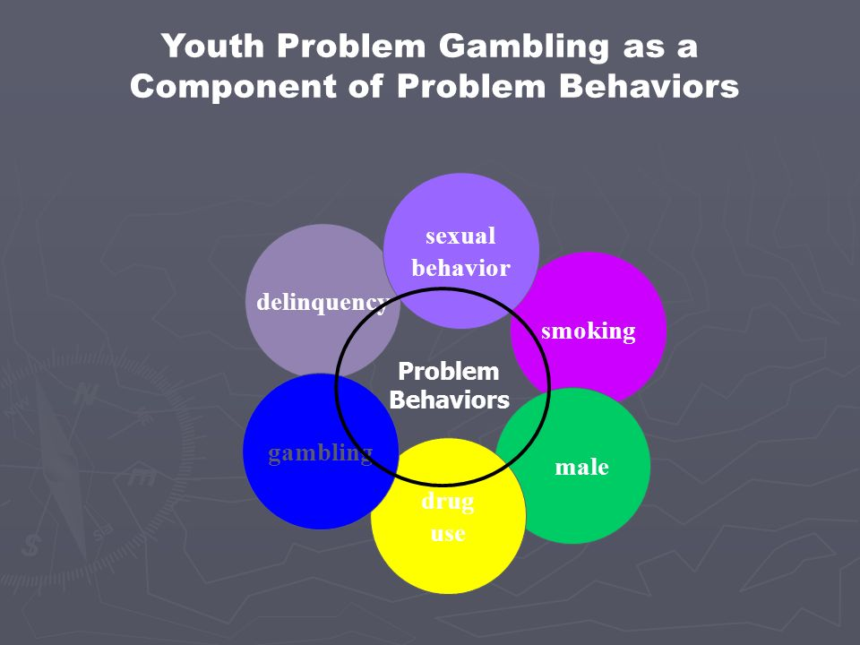 Youth Problem Gambling as a Component of Problem Behaviors
