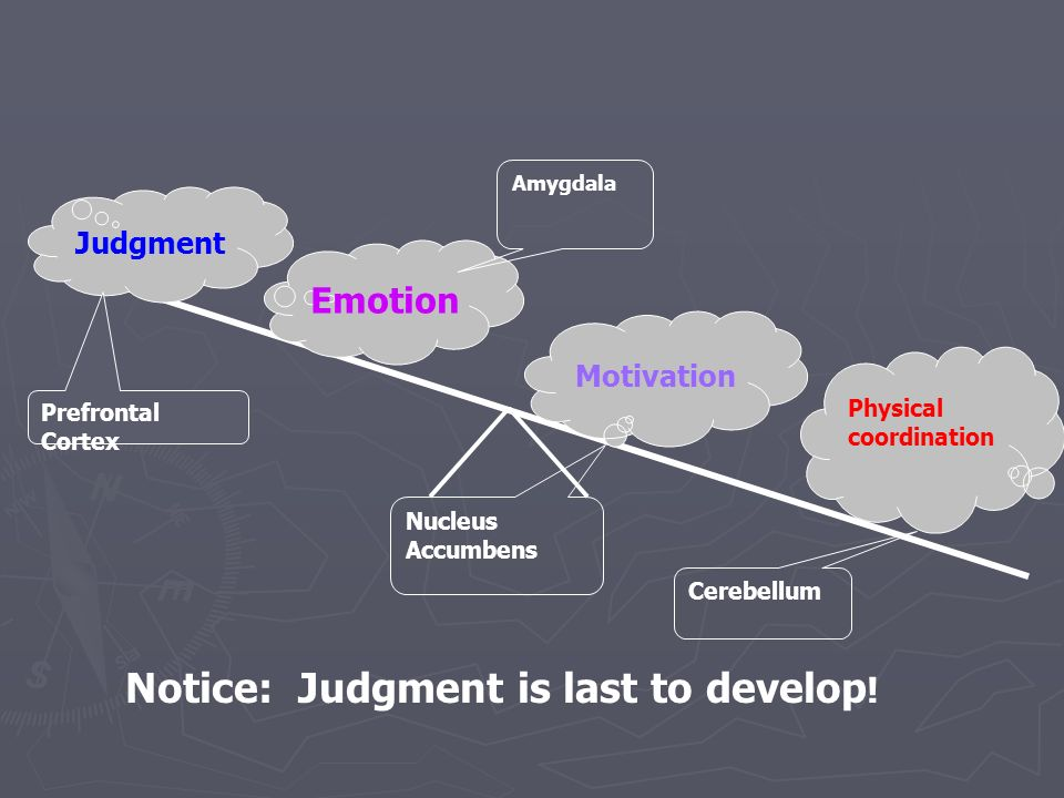 Notice: Judgment is last to develop!