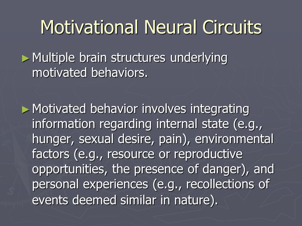 Motivational Neural Circuits