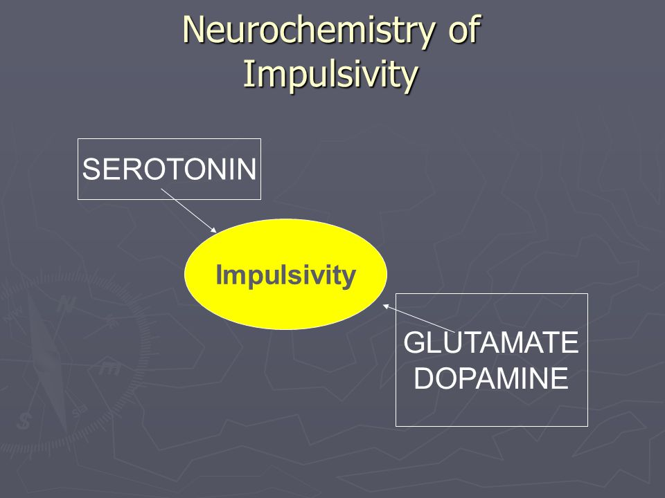 Neurochemistry of Impulsivity