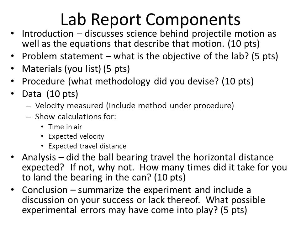 Components of a lab report