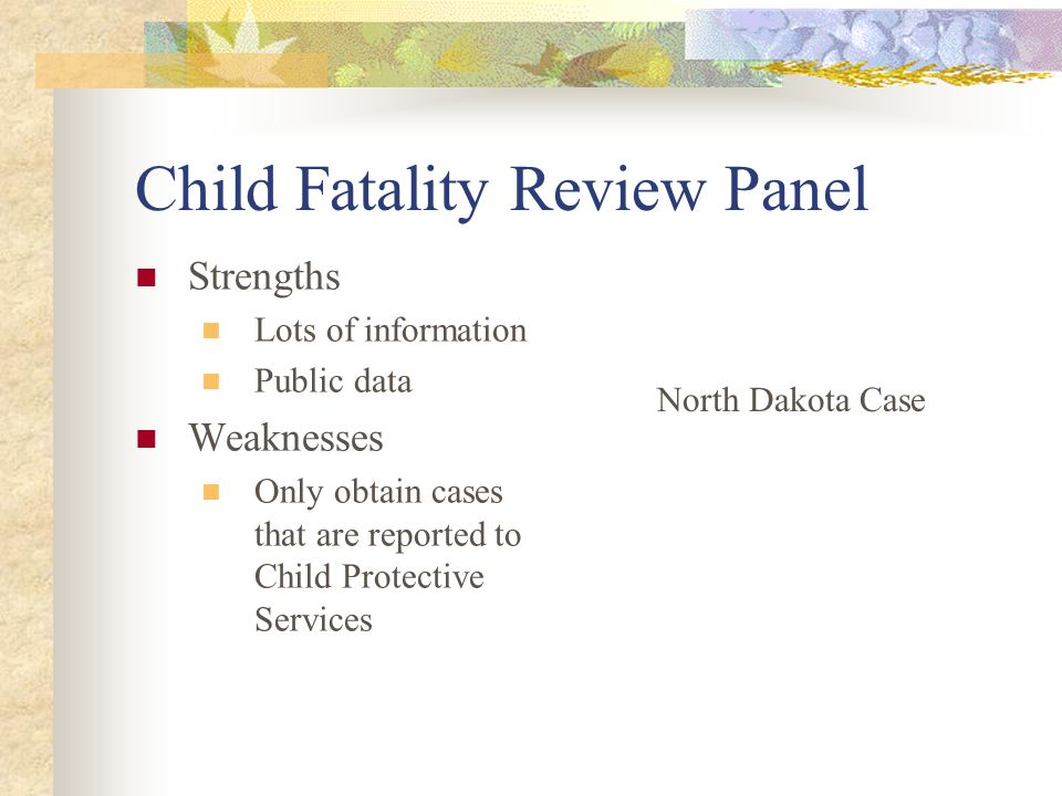 Child Fatality Review Panel