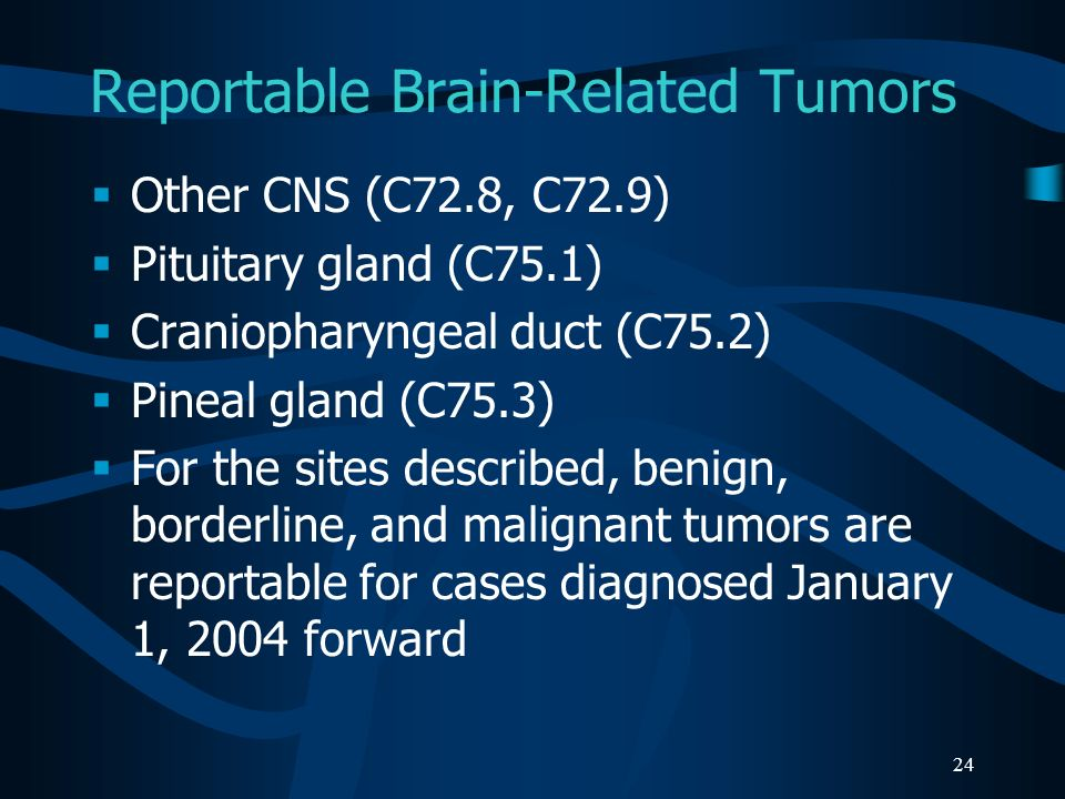 Reportable Brain-Related Tumors