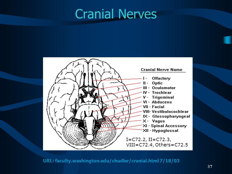Cranial Nerves I=C72.2, II=C72.3, VIII=C72.4, Others=C72.5