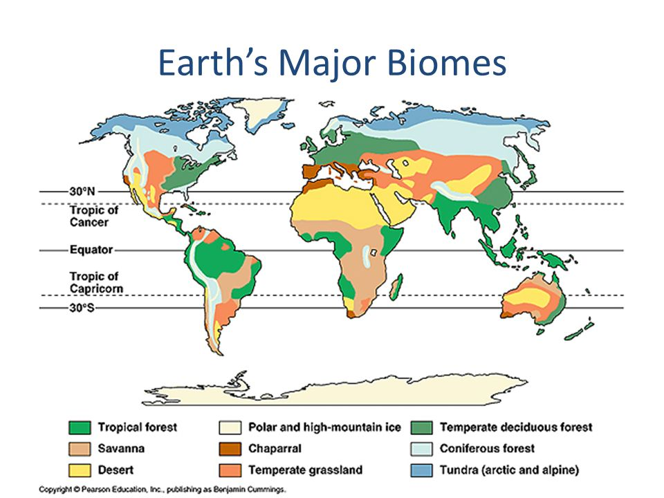 Us map and its land biomes ppt video online download 2 earths major biomes see page 94 of the science textbook gumiabroncs Images