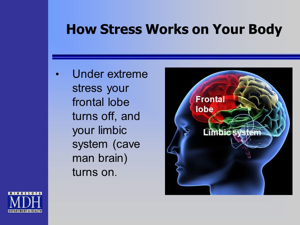How Stress Works on Your Body