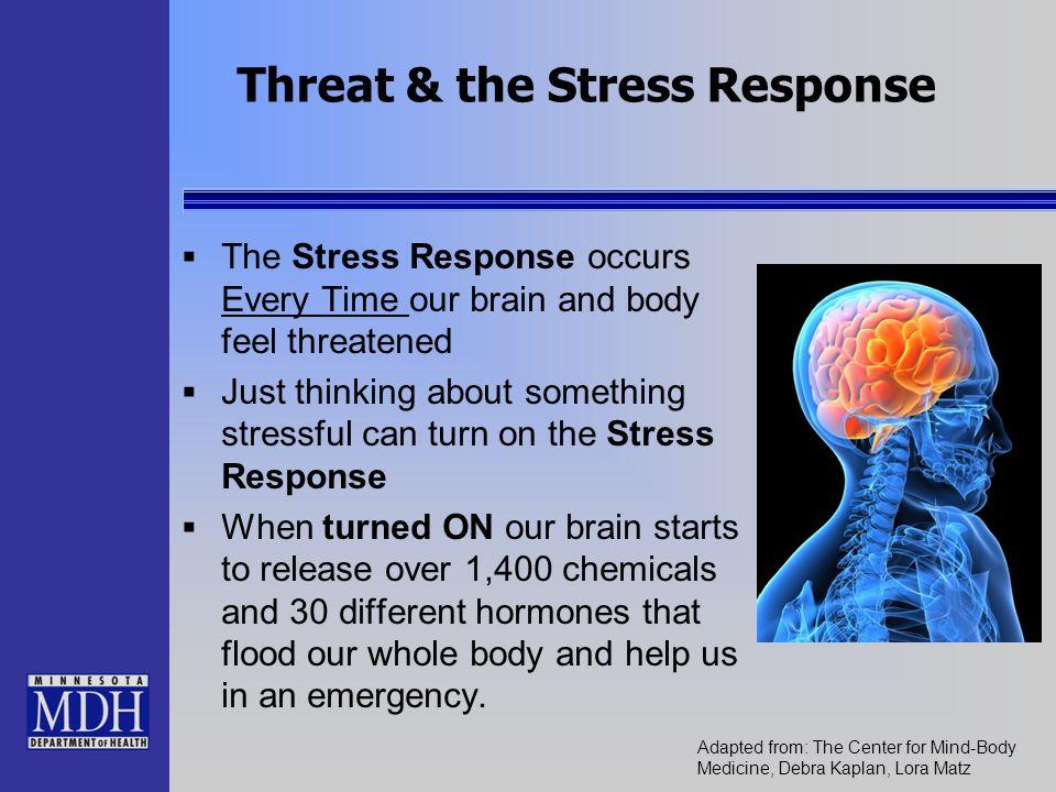 Threat & the Stress Response