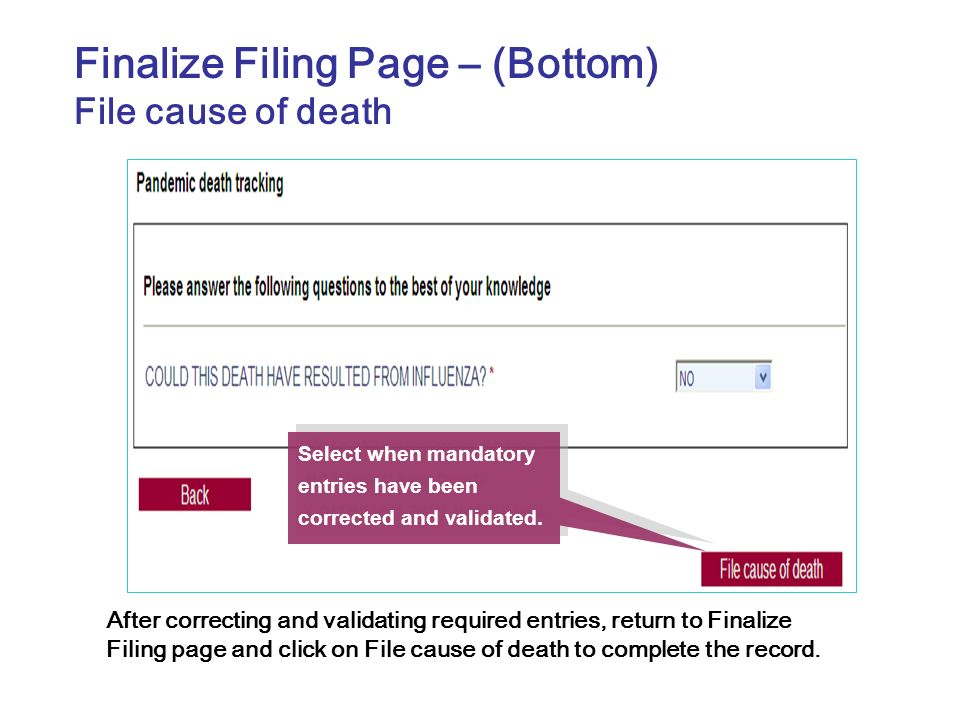 Finalize Filing Page – (Bottom)