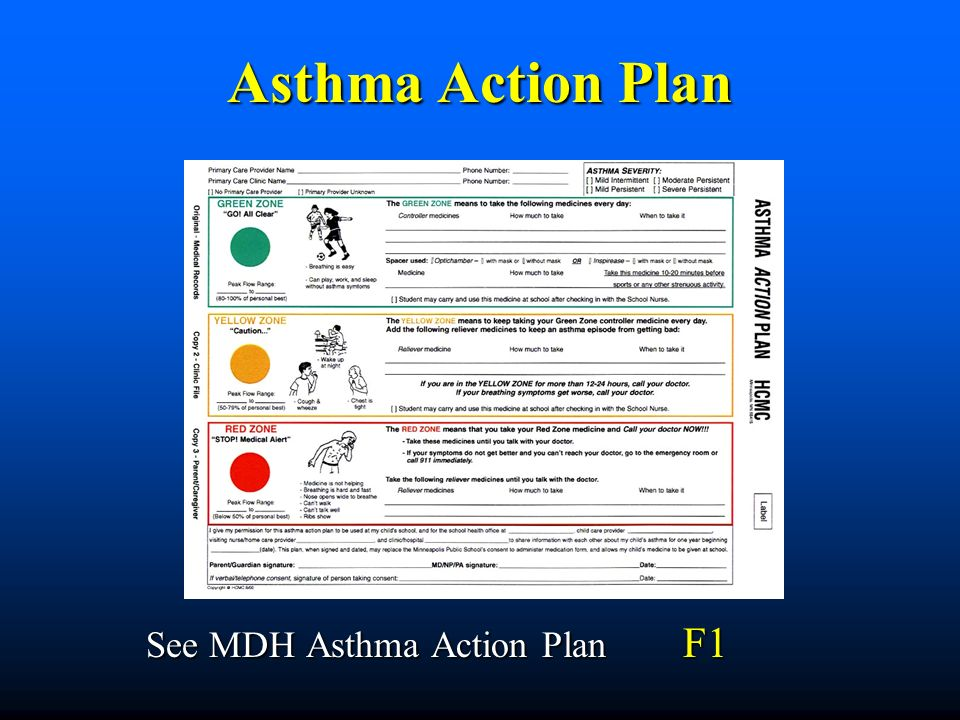 Controlling Asthma Preventing Episodes Before They Occur  Ppt
