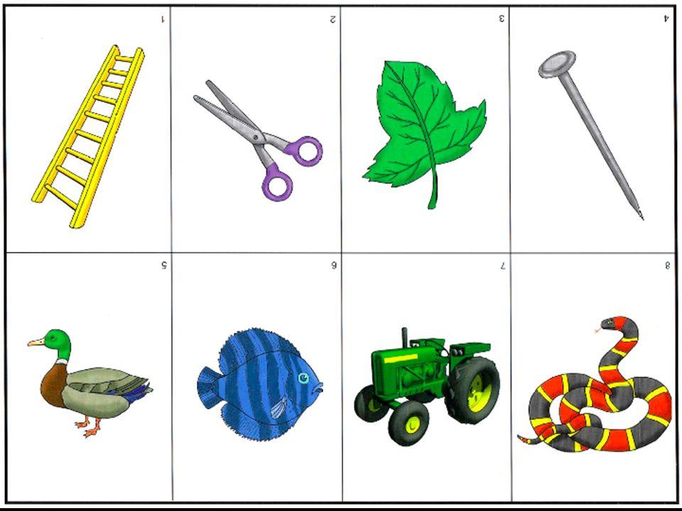 www.CurriculumAssociates.com 3.10.08