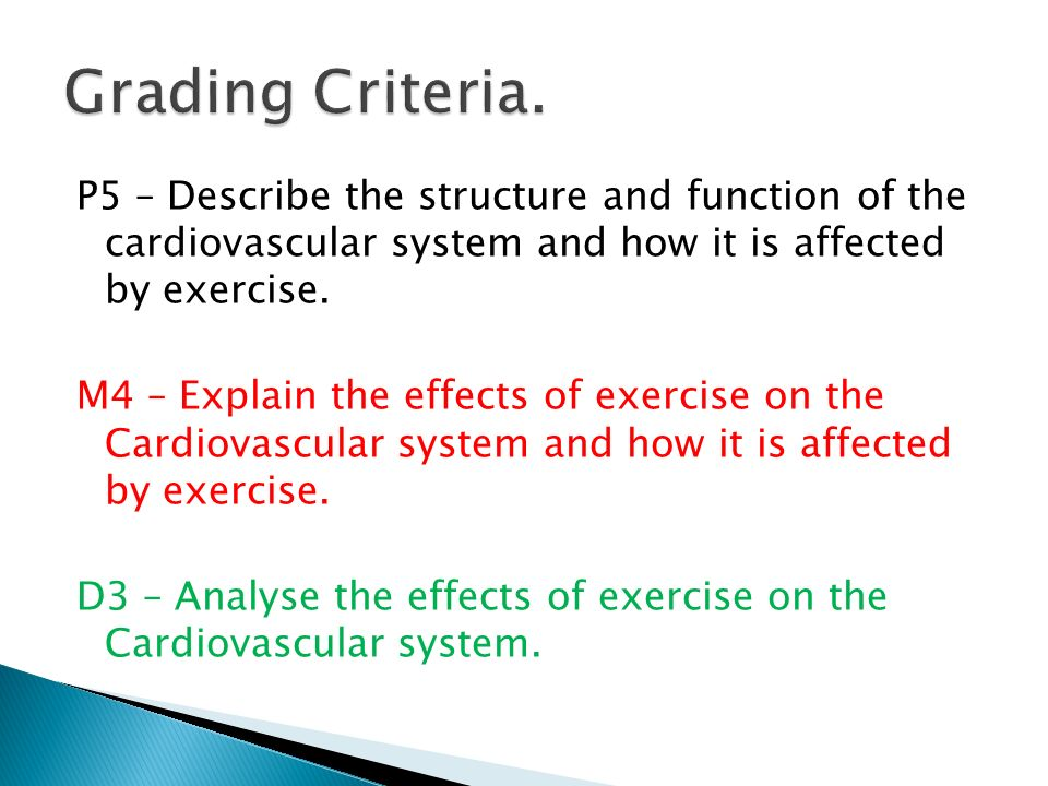 effects of exercise on cardiovascular function Education theme: anatomy and p  long-term effects of exercise,  to develop a better understanding of the function of the cardiovascular system and how it.