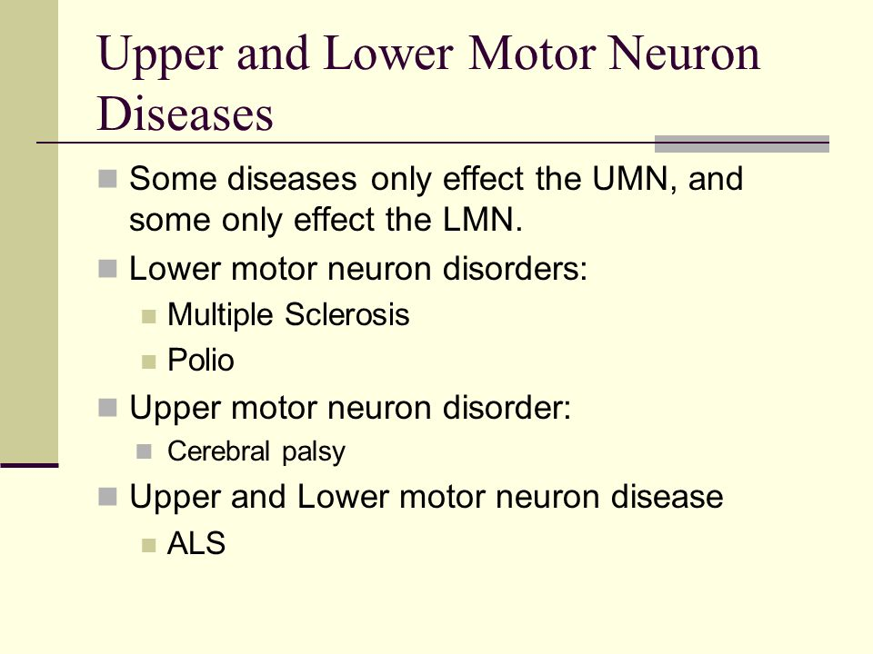 upper motor neuron lesion vs lower ppt