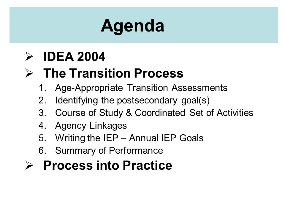 Agenda IDEA 2004 The Transition Process Process into Practice