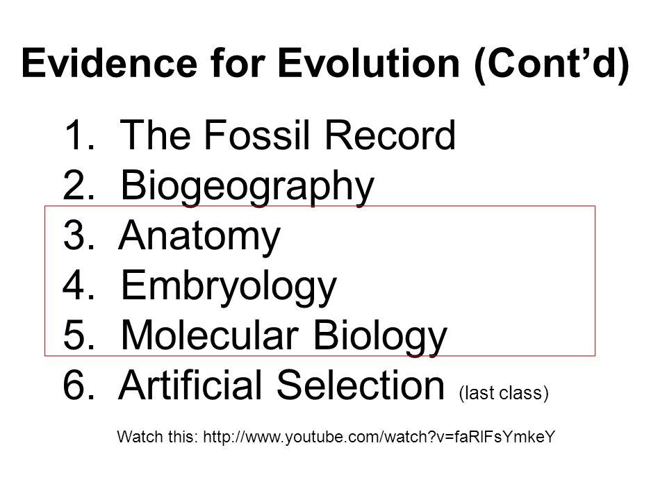 Evidence For Evolution Contd Ppt Video Online Download