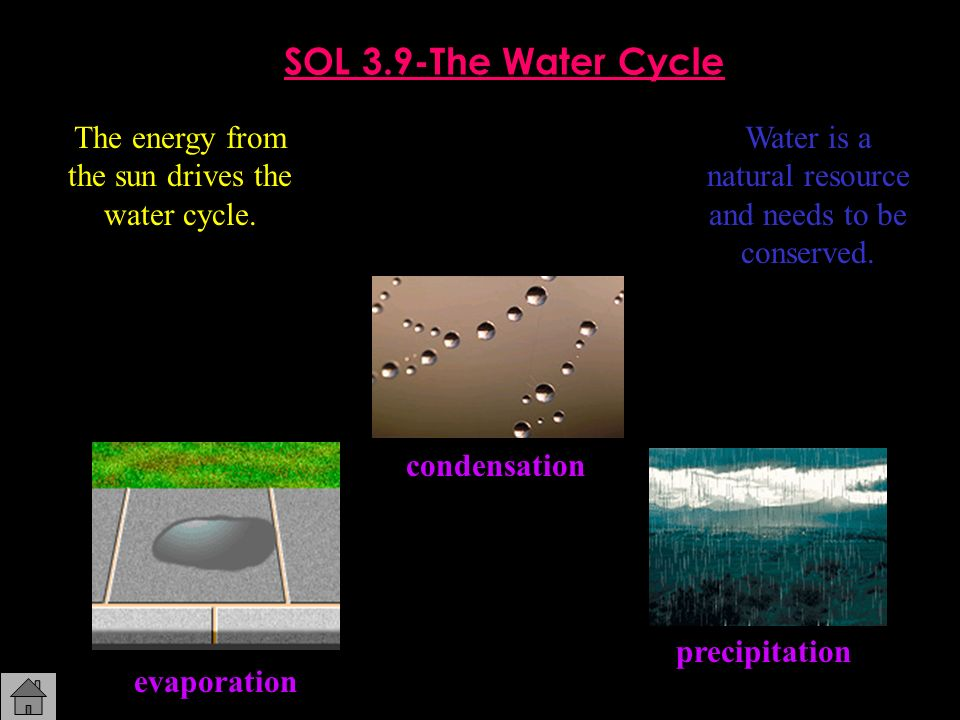 SOL 3.9-The Water Cycle The energy from the sun drives the water cycle. Water is a natural resource and needs to be conserved.