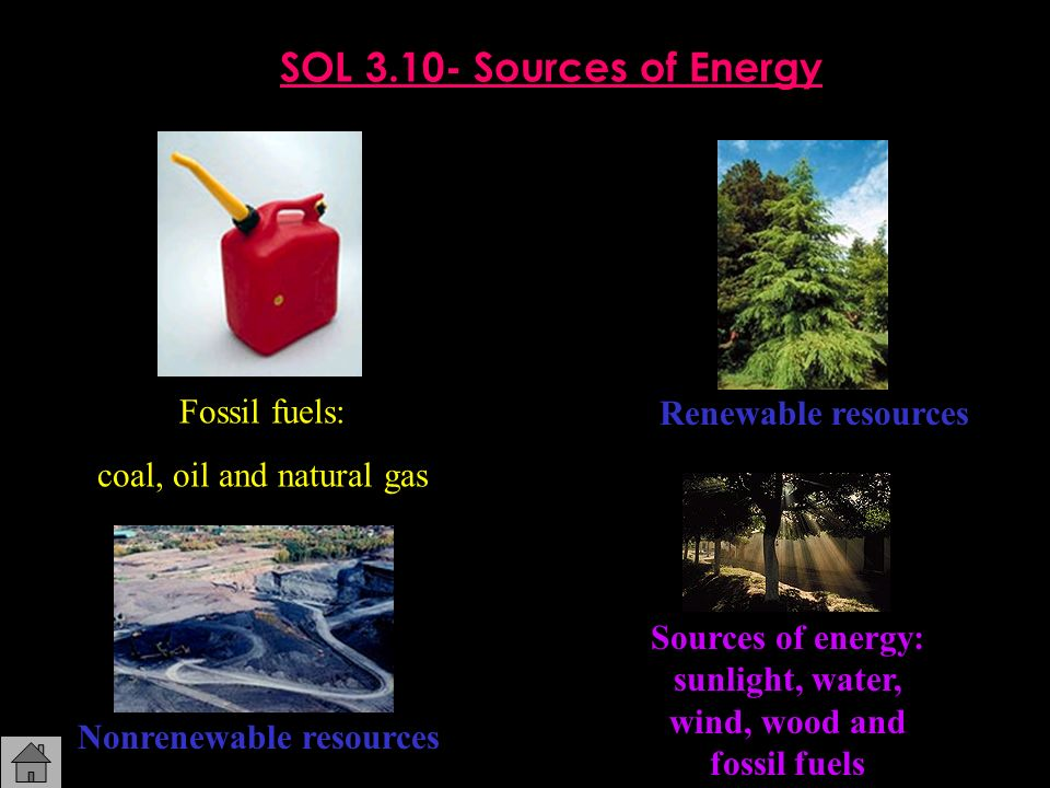 SOL 3.10- Sources of Energy Fossil fuels: Renewable resources