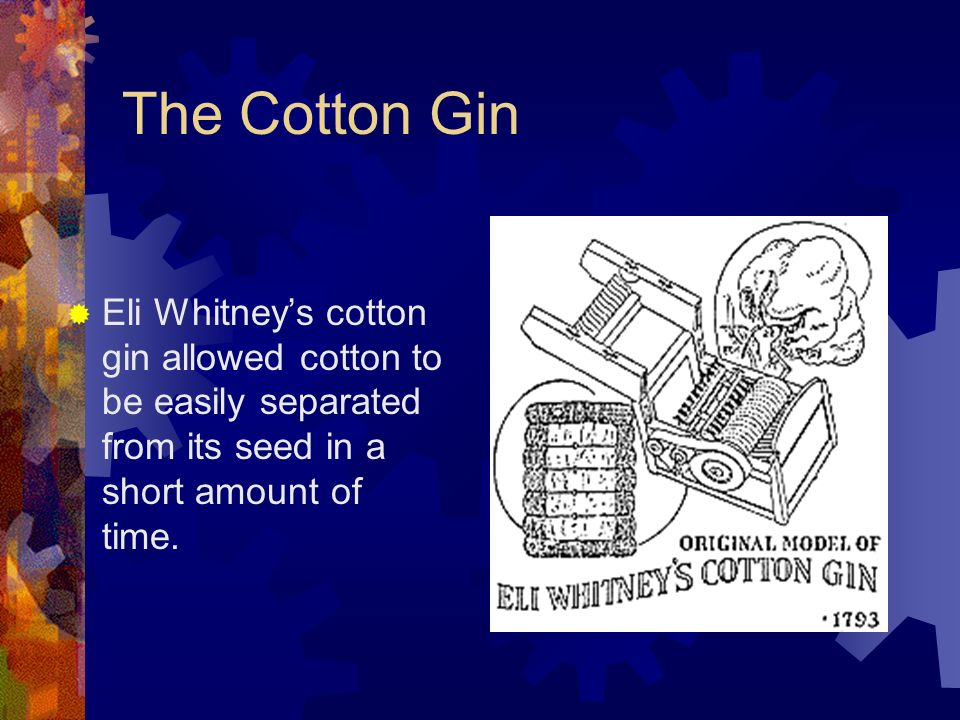 The Cotton Gin Eli Whitney's cotton gin allowed cotton to be easily separated from its seed in a short amount of time.