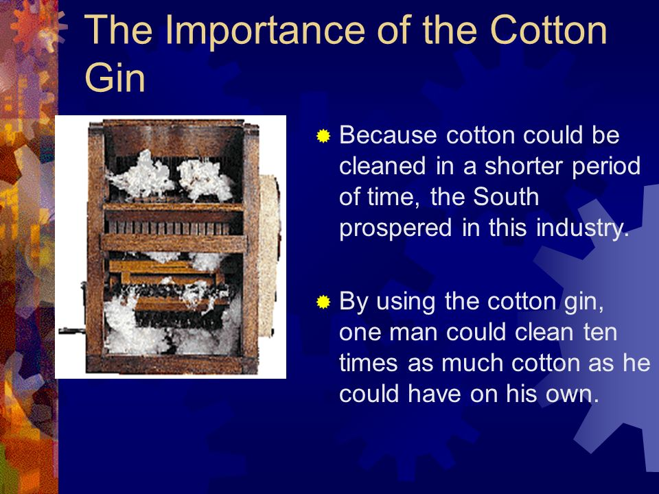 The Importance of the Cotton Gin